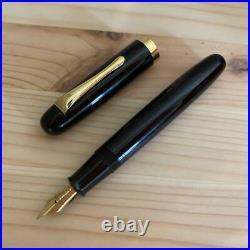 Handmade Fountain Pen Swna101 Shuichi Tsuchida Ginjiro Kabutogi Eisuke Sakai