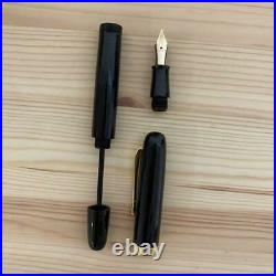 Very Rare Good Condition Item Handmade Fountain Pen 14K Shipping from Japan